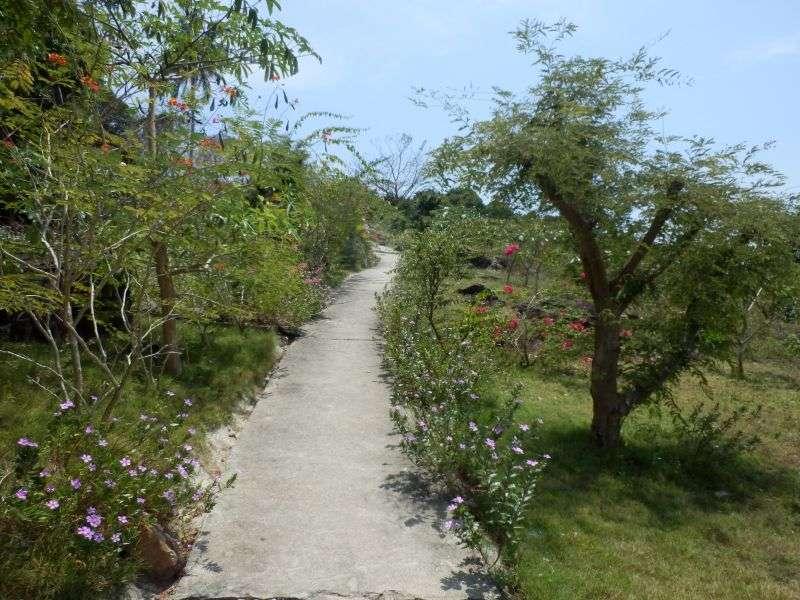 schöne Garten Anlage am Viewpoint 1