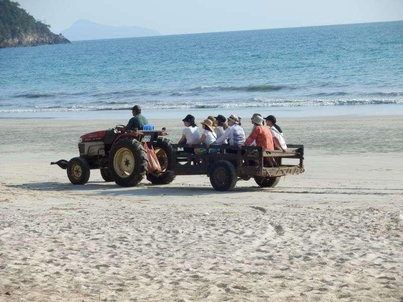 ....oder chinesische Touristen auf Sightseeing......