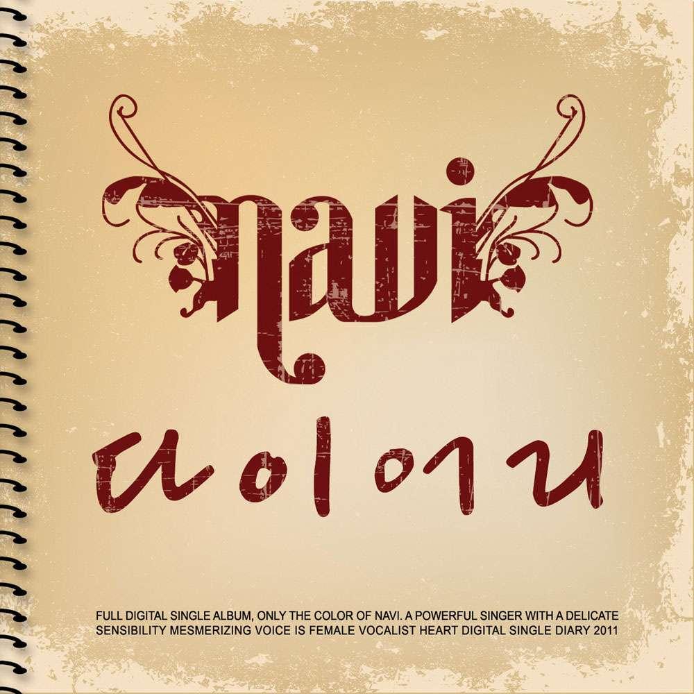 Navi - Diary Cover